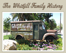 Whitfill Nursery Truck